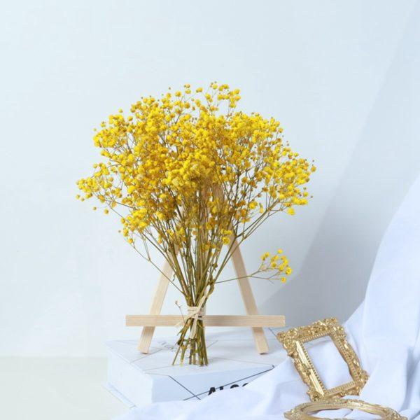 Přírodní sušené květiny - dekorace