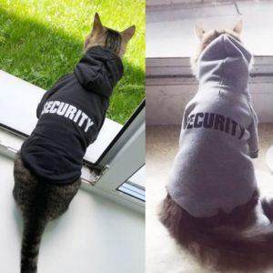 Mikina s kapucí Bandy a nápisem Security pro kočky