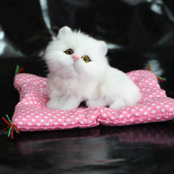 Chlupatá kočička na polštářku jako opravdová - bílá a hnědá