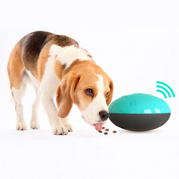 Legrační hračka pro psy s pamlsky