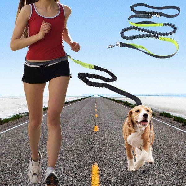 Reflexní multifunkční běžecké vodítko pro psy